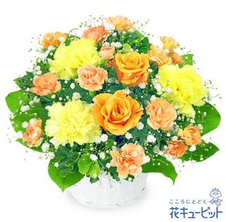 父の日ギフト黄色いバラ